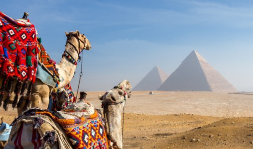 Visum Egypte