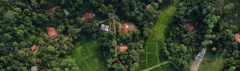 Het land in Sri Lanka